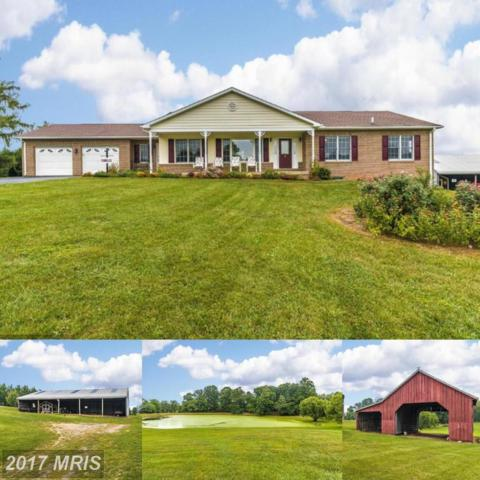 3510 Runkles Drive, Monrovia, MD 21770 (#FR10096761) :: ReMax Plus