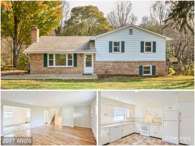4985 Linganore View Drive, Monrovia, MD 21770 (#FR10101224) :: ReMax Plus