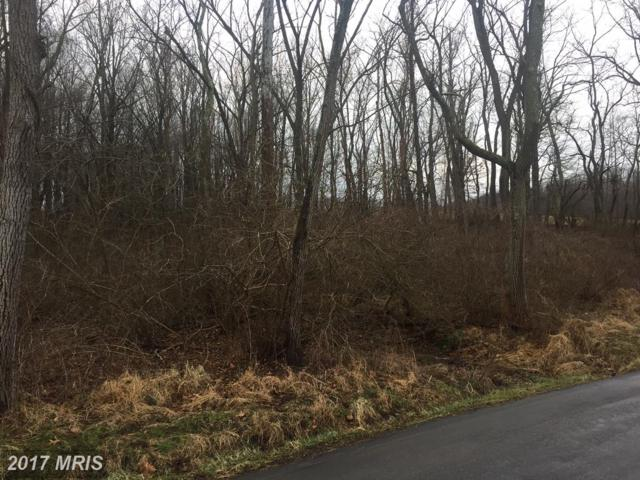 Talbot Run Road, Mount Airy, MD 21771 (#FR10101457) :: The Maryland Group of Long & Foster