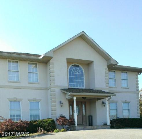 7670 Talbot Run Road, Mount Airy, MD 21771 (#FR10102719) :: The Maryland Group of Long & Foster