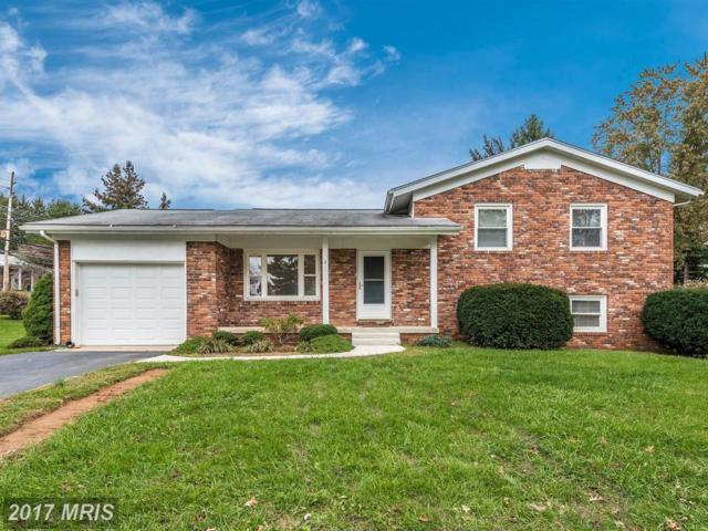 2 Lombardy Drive, Middletown, MD 21769 (#FR10105700) :: The Maryland Group of Long & Foster