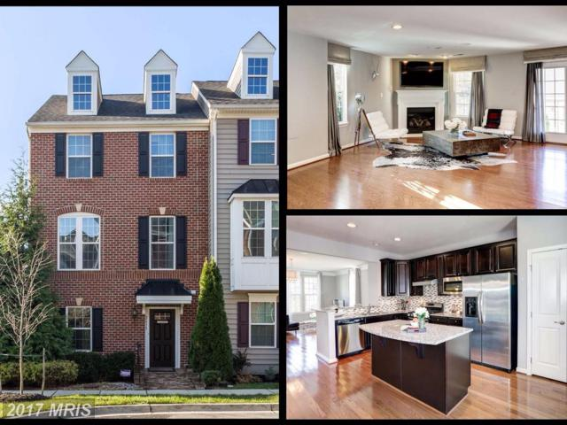 2613 Egret Way, Frederick, MD 21701 (#FR10106429) :: Pearson Smith Realty