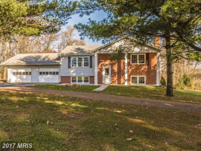 11014 Carriage Lane, Frederick, MD 21701 (#FR10107698) :: Ultimate Selling Team
