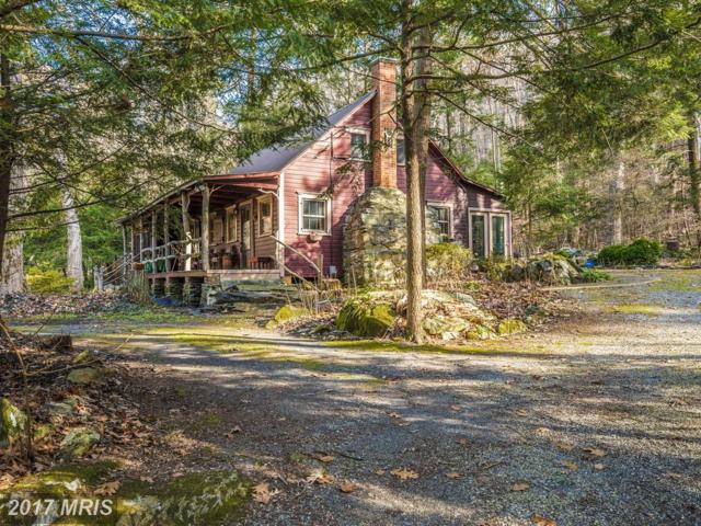 12171 Wolfsville Road, Myersville, MD 21773 (#FR10114434) :: Pearson Smith Realty