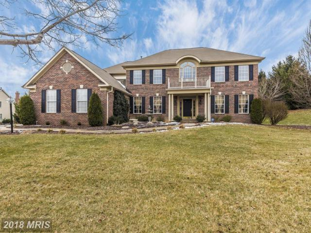 6602 Mackenzie Place, Ijamsville, MD 21754 (#FR10133700) :: Jim Bass Group of Real Estate Teams, LLC