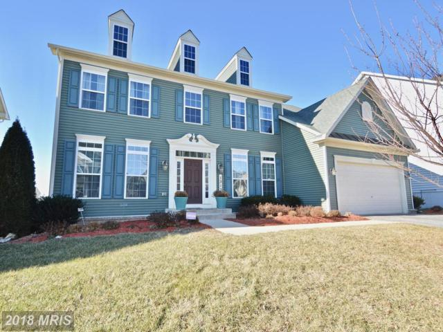 1313 Volunteer Drive, Brunswick, MD 21716 (#FR10135315) :: Pearson Smith Realty