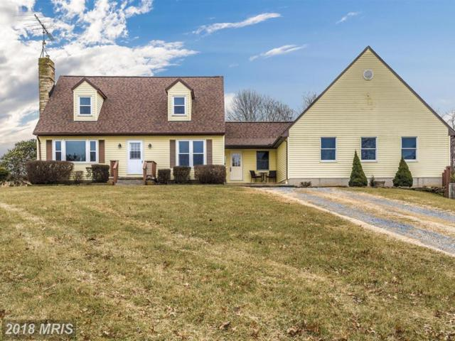 3395 Red Oak Court, Middletown, MD 21769 (#FR10135719) :: ReMax Plus