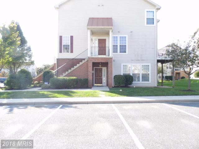 5302-A Talladega Court #104, Frederick, MD 21703 (#FR10136724) :: ReMax Plus
