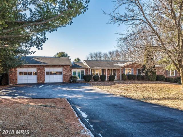 4295 Hollow Court, Middletown, MD 21769 (#FR10138387) :: ExecuHome Realty