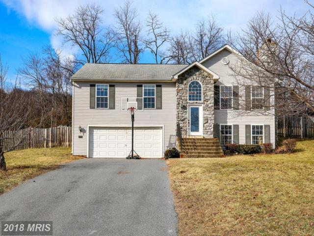 144 Redhaven Court, Thurmont, MD 21788 (#FR10139700) :: Jim Bass Group of Real Estate Teams