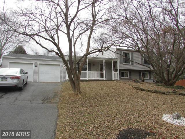 4401 Onyx Court, Middletown, MD 21769 (#FR10139764) :: ExecuHome Realty