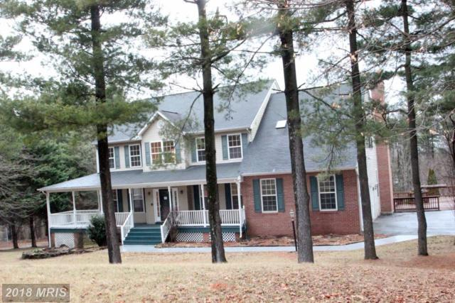508 Russet Leaf Terrace, Woodsboro, MD 21798 (#FR10158674) :: The Maryland Group of Long & Foster