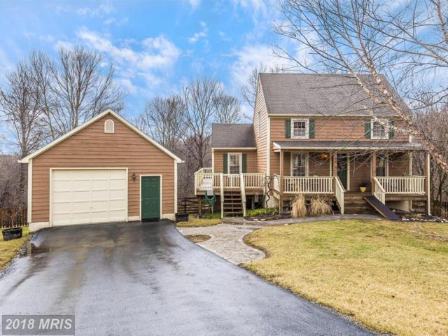 6654 Long Beach Court, New Market, MD 21774 (#FR10159508) :: The Maryland Group of Long & Foster