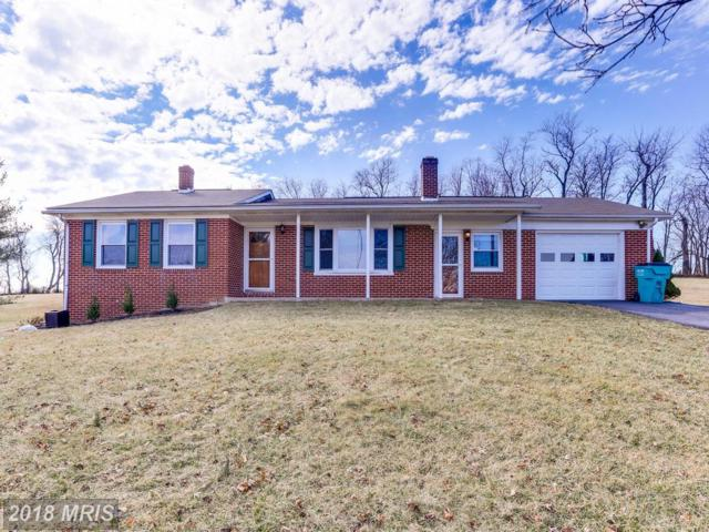 10229 Allview Drive, Frederick, MD 21701 (#FR10162980) :: Ultimate Selling Team