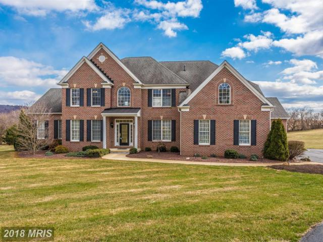 8217 Valley View Terrace, Middletown, MD 21769 (#FR10180291) :: Jim Bass Group of Real Estate Teams
