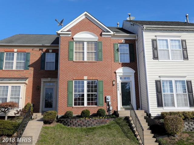 6603 Skylar Place, Frederick, MD 21703 (#FR10181374) :: Circadian Realty Group
