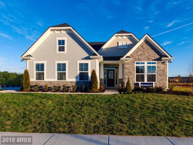 206 Ingalls Drive, Middletown, MD 21769 (#FR10182581) :: Ultimate Selling Team