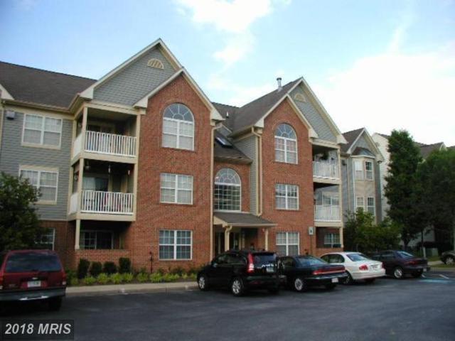 6512 Springwater Court #4404, Frederick, MD 21701 (#FR10199343) :: Jim Bass Group of Real Estate Teams, LLC