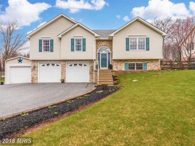 13723 Jimtown Road, Thurmont, MD 21788 (#FR10200641) :: Jim Bass Group of Real Estate Teams, LLC