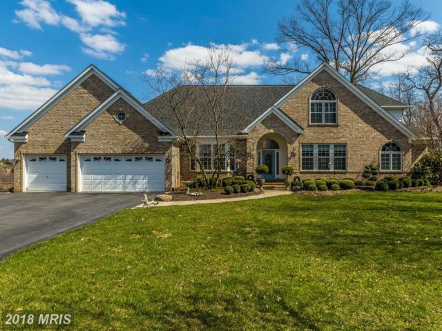 5560 Broadmoor Terrace N, Ijamsville, MD 21754 (#FR10207341) :: Jim Bass Group of Real Estate Teams, LLC