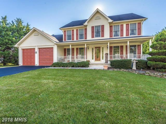 303 Cone Branch Drive, Middletown, MD 21769 (#FR10208145) :: Jim Bass Group of Real Estate Teams, LLC