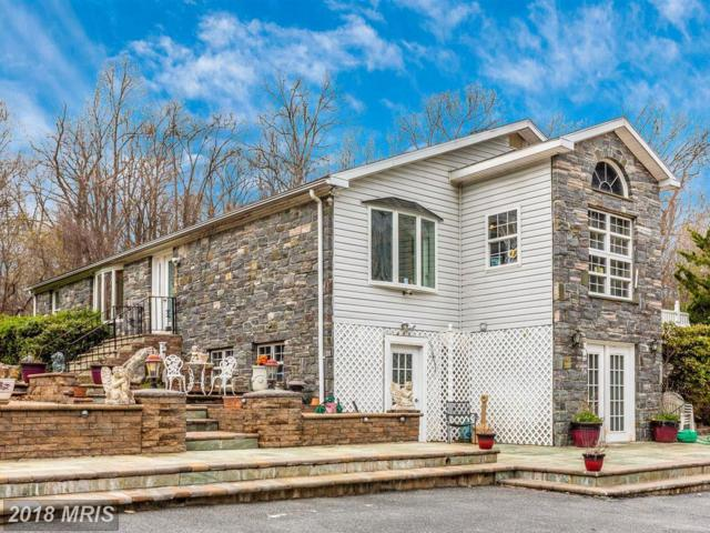 6610 Green Valley Road, New Market, MD 21774 (#FR10208475) :: Charis Realty Group