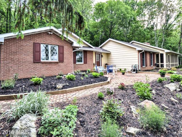 11507 Woodland Way Road, Myersville, MD 21773 (#FR10211813) :: Jim Bass Group of Real Estate Teams, LLC