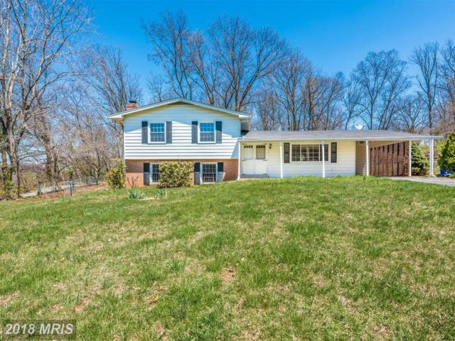 11802 Wendy Court, Monrovia, MD 21770 (#FR10214244) :: ReMax Plus