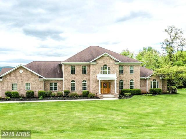 10727 Easterday Road, Myersville, MD 21773 (#FR10214572) :: Jim Bass Group of Real Estate Teams, LLC
