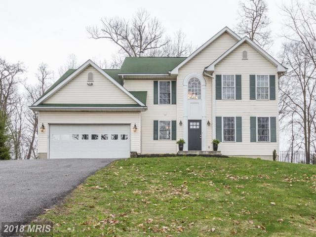 10732 Liberty Road, Frederick, MD 21701 (#FR10218163) :: Jim Bass Group of Real Estate Teams, LLC