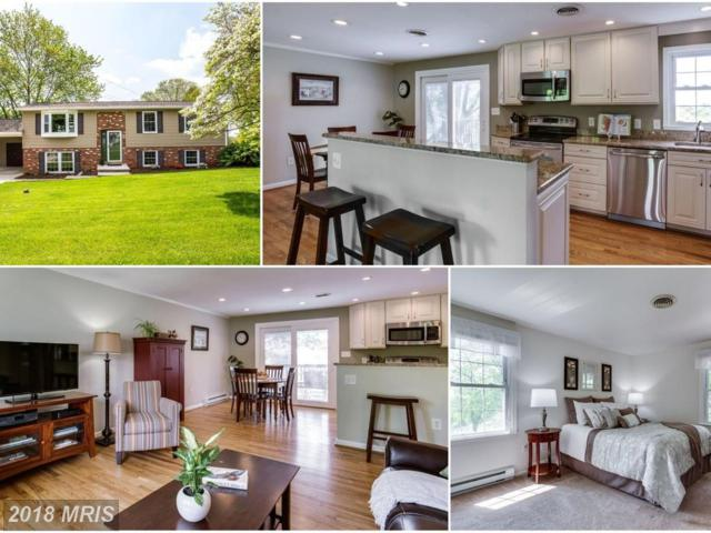 2419 Tabor Drive, Middletown, MD 21769 (#FR10226873) :: Ultimate Selling Team