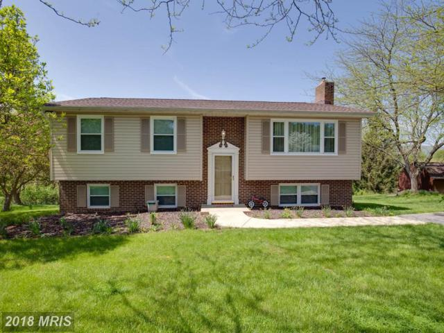 7306 Countryside Drive, Middletown, MD 21769 (#FR10228672) :: Ultimate Selling Team