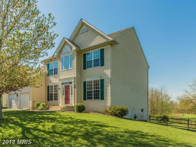 301 Braeburn Drive, Walkersville, MD 21793 (#FR10230540) :: The Gus Anthony Team