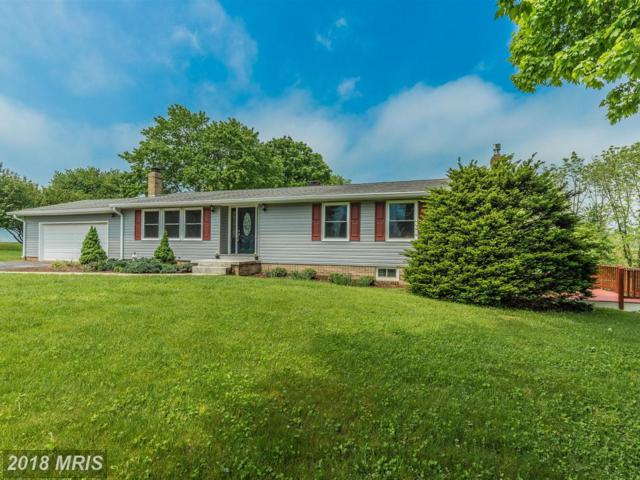 2420 Tabor Drive, Middletown, MD 21769 (#FR10239416) :: The Maryland Group of Long & Foster