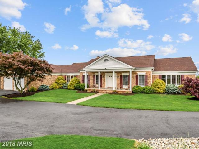 8404 Shiloh Court, Frederick, MD 21704 (#FR10240147) :: ReMax Plus