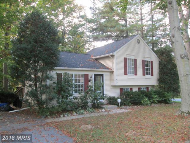 3801 Pippins Place, Point Of Rocks, MD 21777 (#FR10241988) :: Bob Lucido Team of Keller Williams Integrity