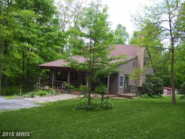 13105 Tower Road, Thurmont, MD 21788 (#FR10247645) :: Keller Williams Preferred Properties