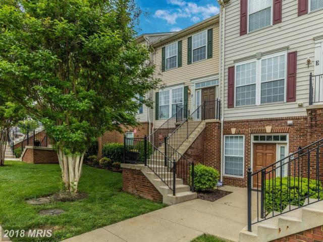 6502 Montalto Crossing F, Frederick, MD 21703 (#FR10249239) :: RE/MAX Plus