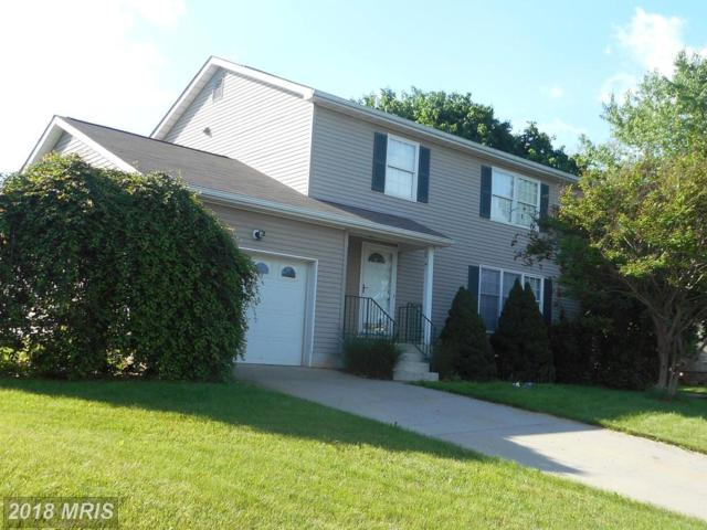 4 Old Barn Court, Thurmont, MD 21788 (#FR10251442) :: The Bob & Ronna Group