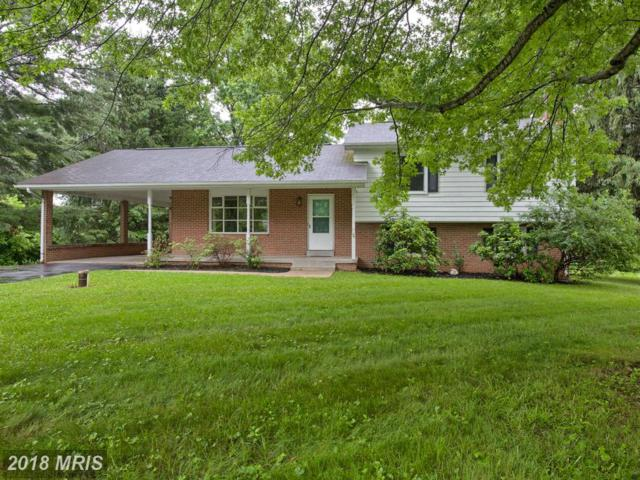 8580 Mansfield Court, Middletown, MD 21769 (#FR10255118) :: Jim Bass Group of Real Estate Teams, LLC