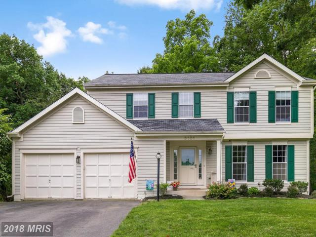 6101 Twain Drive, New Market, MD 21774 (#FR10270494) :: Ultimate Selling Team