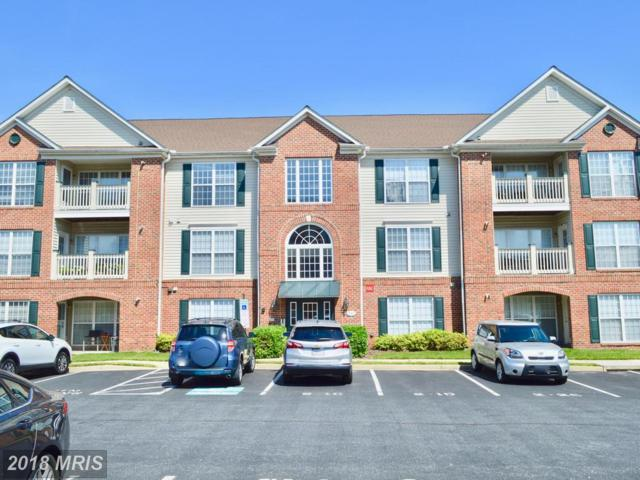 591 Cawley Drive 1-3A, Frederick, MD 21703 (#FR10273048) :: Wilson Realty Group