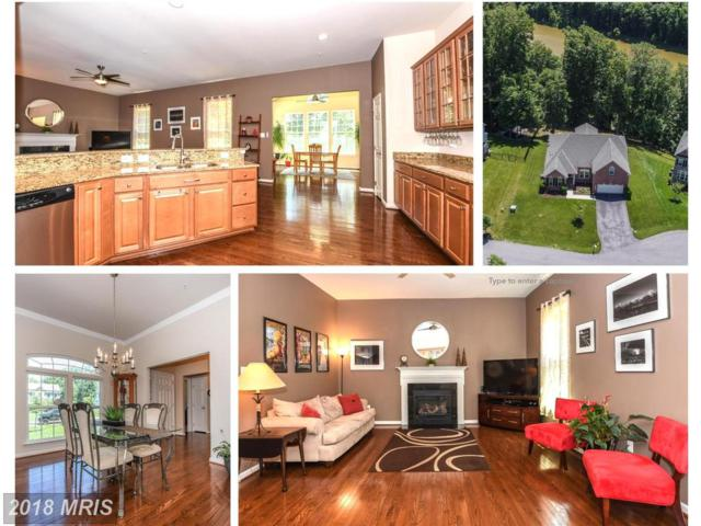 9805 Accipiter Court, New Market, MD 21774 (#FR10273328) :: Jim Bass Group of Real Estate Teams, LLC