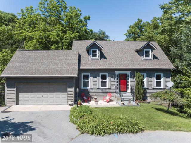 10306 Baykal Trail, New Market, MD 21774 (#FR10273611) :: Jim Bass Group of Real Estate Teams, LLC