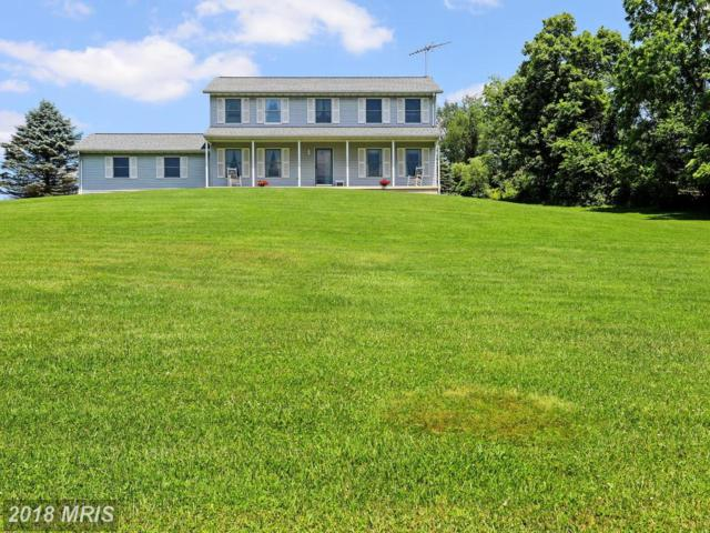 3512 Bittle Road, Myersville, MD 21773 (#FR10274947) :: Jim Bass Group of Real Estate Teams, LLC