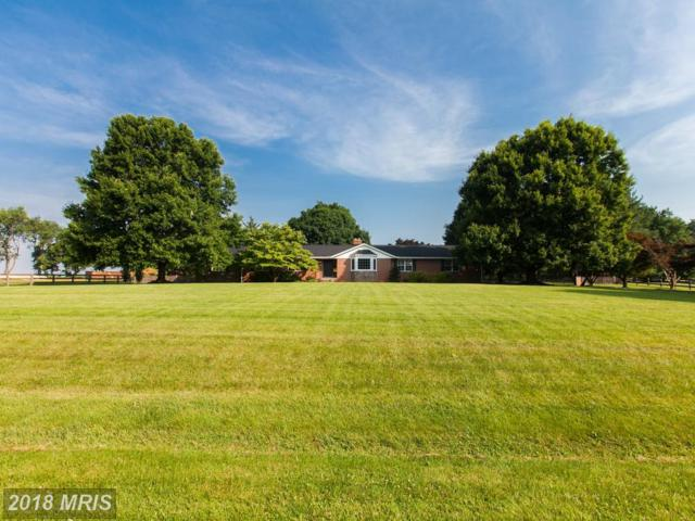 4186 Appaloosa Lane, Middletown, MD 21769 (#FR10275193) :: Jim Bass Group of Real Estate Teams, LLC