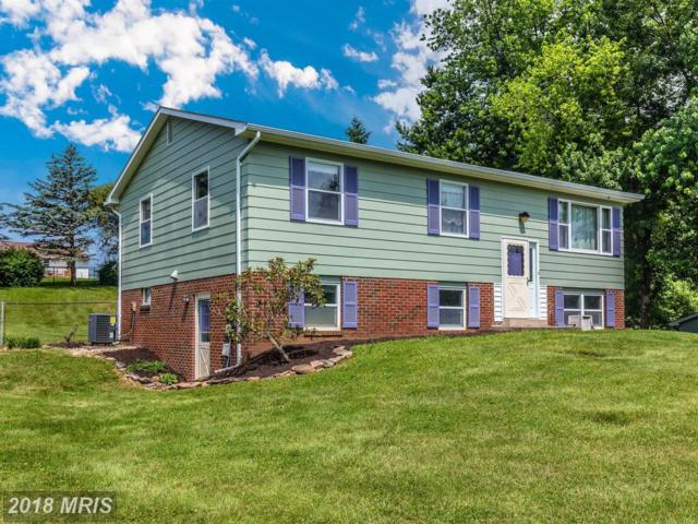 8206 James Street, Middletown, MD 21769 (#FR10275532) :: Jim Bass Group of Real Estate Teams, LLC