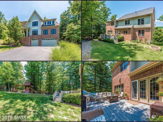 6700 Accipiter Drive, New Market, MD 21774 (#FR10288753) :: Jim Bass Group of Real Estate Teams, LLC