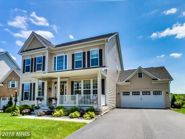719 Sewell Drive, New Market, MD 21774 (#FR10288919) :: Charis Realty Group