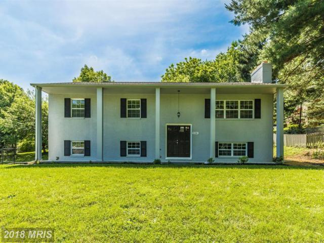 7108 Saddle Road, New Market, MD 21774 (#FR10289962) :: Charis Realty Group